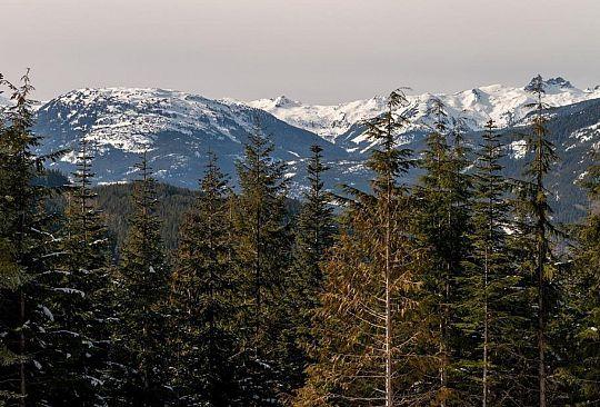 2905 KADENWOOD DRIVE Whistler BC Canada