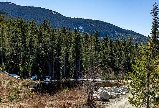 9252 WEDGEMOUNT PLATEAU DRIVE Whistler BC Canada