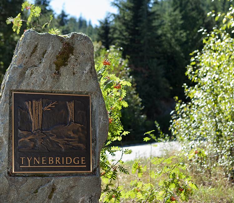 tynebridge