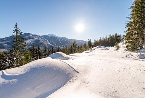 5450 Stonebridge Drive Whistler BC Canada